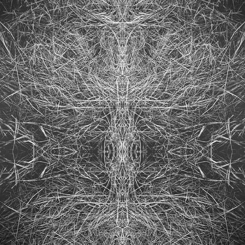 Owl Vision - Devilish (Teaser)