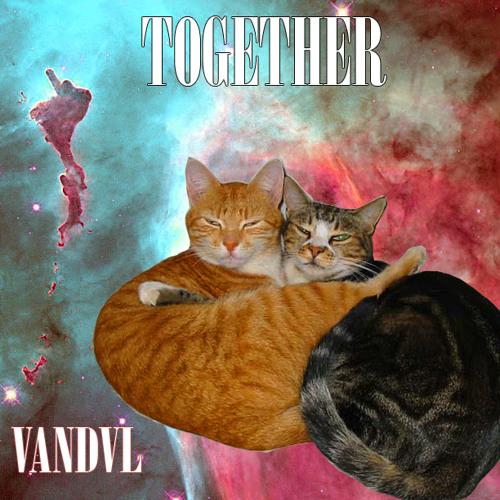 VANDVL - TOGETHER...[BMECTE]
