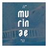 Murinae