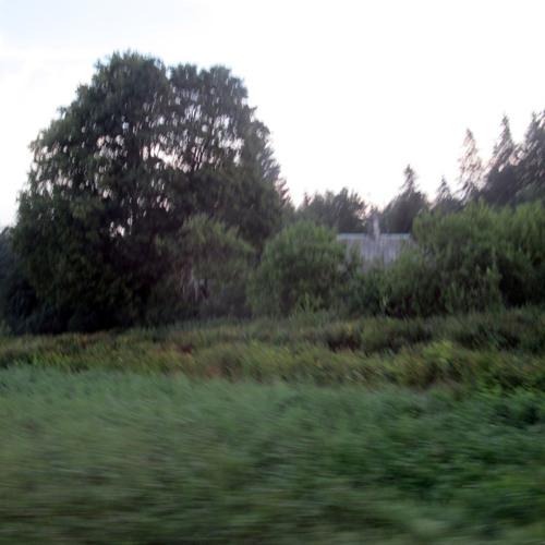 Robbing Hood - August (clip)