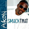 Smack that-Akon (Genetix Remix) FREE DOWNLOAD