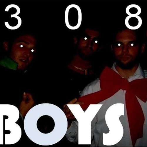308 Boys - Song of the Summer (Party Friendly)