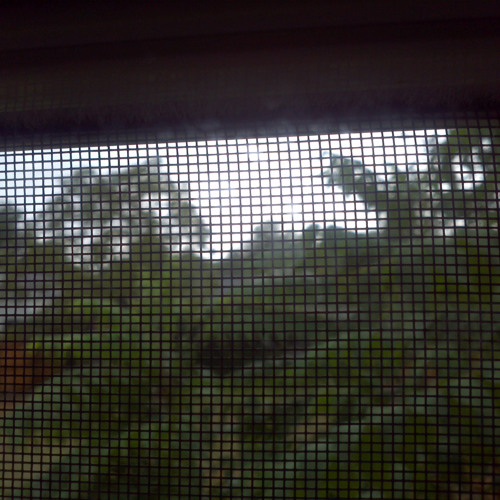 Rain...because we may not here it ...4amin.