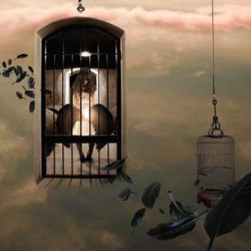 Rafael Moreira, Gui Ferigatto & Leandro Moura - Three Caged (SC-Preview)