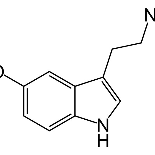 Sylvain Johansson & Charley Prince - Serotonin (LQ SNIP)
