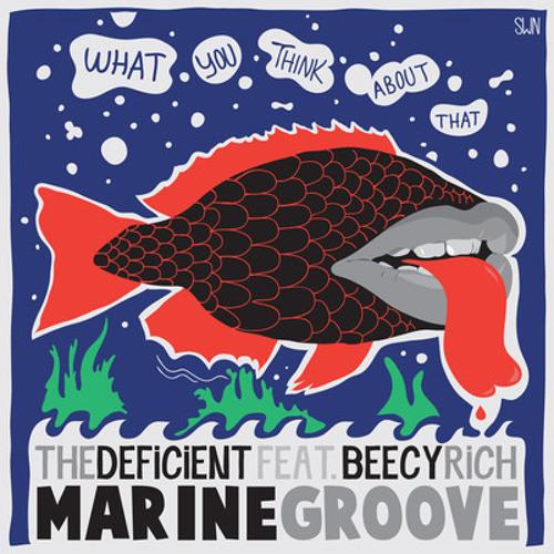 The Deficient - Marine Groove ( Harrys & Fly Remix) [Elektrolicious / 17:44]