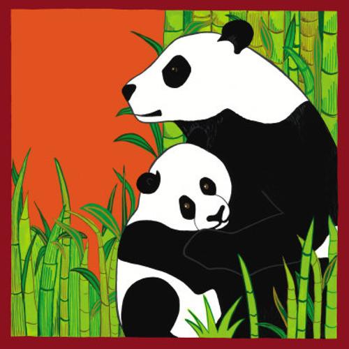 Take Pills (panda bear cover)