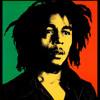 Remix Rihanna / Bob Marley / Sexion d'assaut