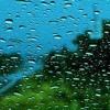 Rainy Mornings