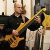 Bassline Worp Standard fretless - Stefan Rademacher