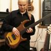 Bassline Viper - Stefan Rademacher