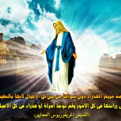 08.العدرا فى بيتنا