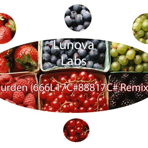 Lunova Labs – Burden (666L17C#88817C# Remix)