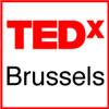 TEDxBrussels - Greg Brosofske - A Modest Proposal