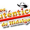 Download AUTENTICOS DE HIDALGO Eres tu la dueña de mi corazon. Mp3