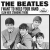 The Beatles - I want to hold your Hand (cover)