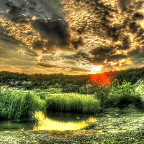 Las - The Lake   FREE download