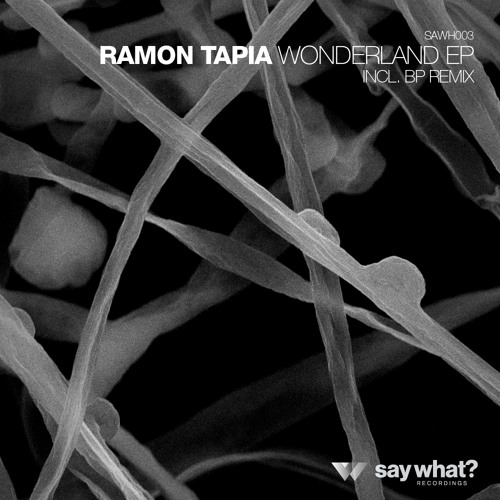 Ramon Tapia - Wonderland EP [Say What? Recordings]