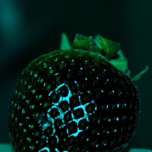 Nicky Romero & Zedd - Human (Rawrberry Remix) [FREE DL]