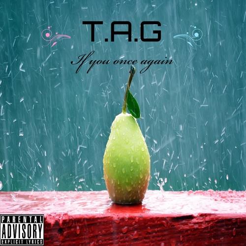 T.A.G & AQU-E - If you once again(Remix)
