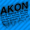 Akon Sorry Blame It On Me Acoustic Verision By Guy Sharon [buy Free Download] Mp3