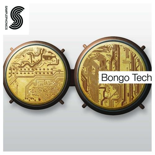 Bongo Tech Demo 01