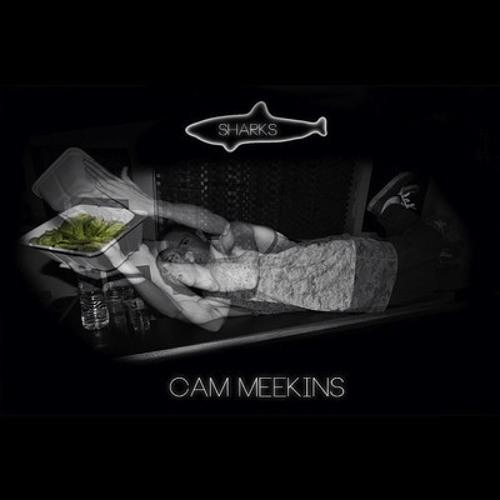 Cams Meekins - Sharks