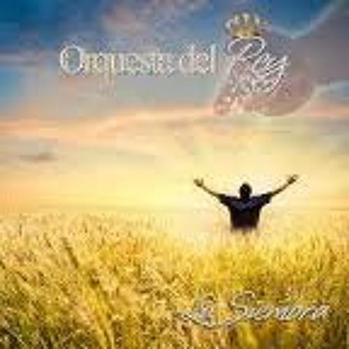 Orquesta Del Rey - La Siembra