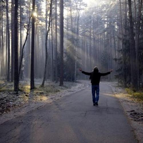 Ludwig von Breakhoven - Défilé de la Solitude (Entheogenetix remix)