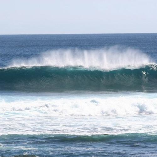 BassSeeker-Ocean Breeze