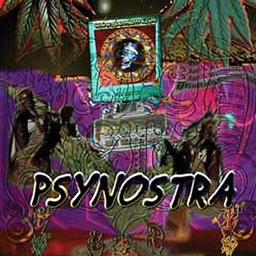 Stranger vs Kulu - Psychedelic Experience RMX 150 (VA - Psynostra 2008 @ Goanmantra Records)