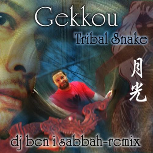 a gecko's dance in the moonlite