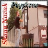 Maroon 5 - Payphone [Shaun Novak Cover]