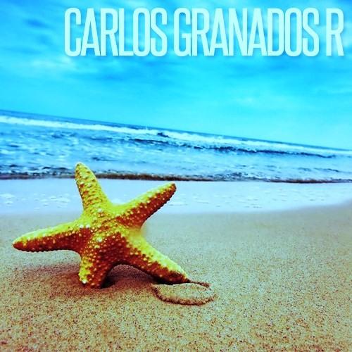 Summer 2012 - Carlos Granados R