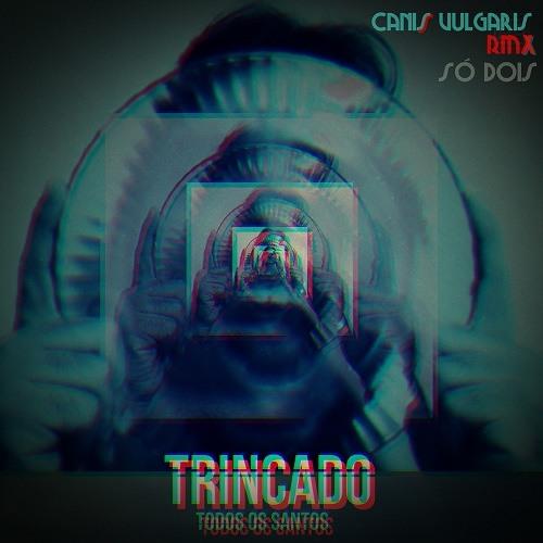 Trincado - Só Dois(Canis Vulgaris Remix)