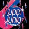 Super Junior - SPY (Real Shinjitsu Mix)