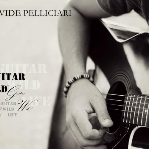 Guitar, Wild, Life
