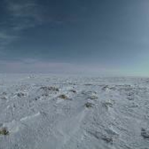 Azure-Tundra