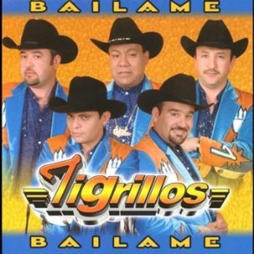Los Tigrillos - Bailame (DJ Pilly Pura Vueltita Mix) Download!