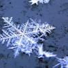 Cold (Annie Lennox)