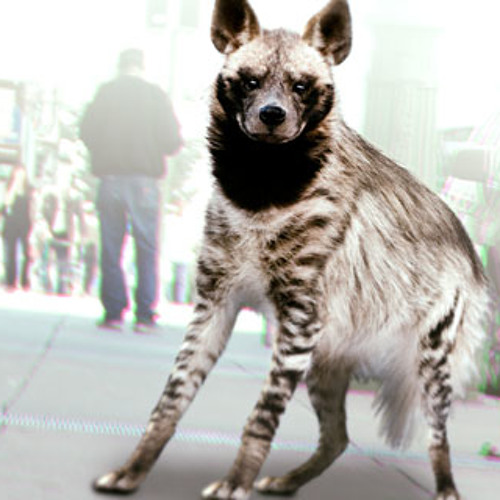"Bubbles the Hyena / Snap Judgment, ""Monsters"""