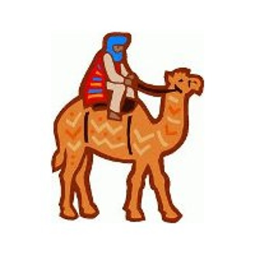 Did you ever ride a Camel ?