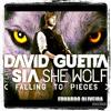 David Guetta Feat. Sia - She Wolf (Never Give Up) (Eduardo Oliveira Private Mashup)