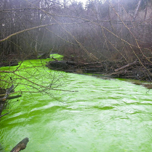 The Corrosive River