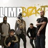 Limp Bizkit - Walking away cover