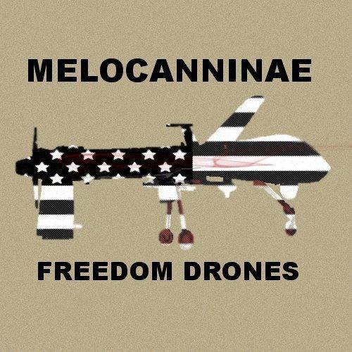 Freedom Drones