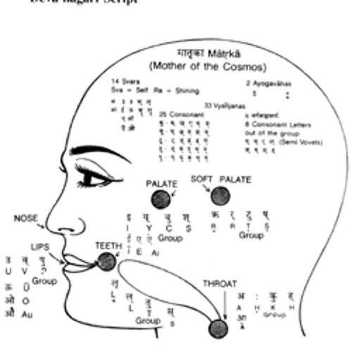 Sanskrit Riddim