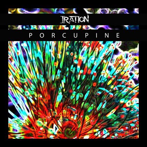 Porcupine (acoustic)
