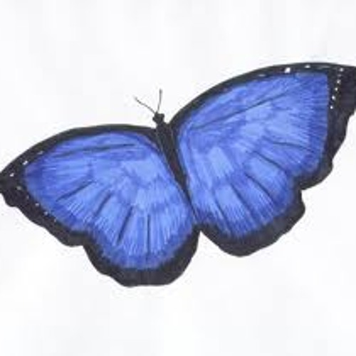 butterfly effect - valaB