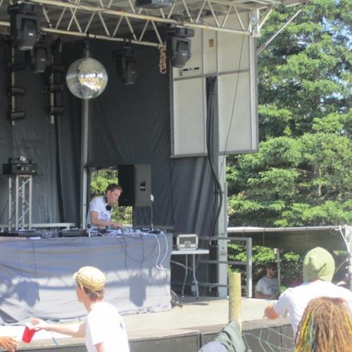 Skeemer's turtle tunes @ the evolve festival
